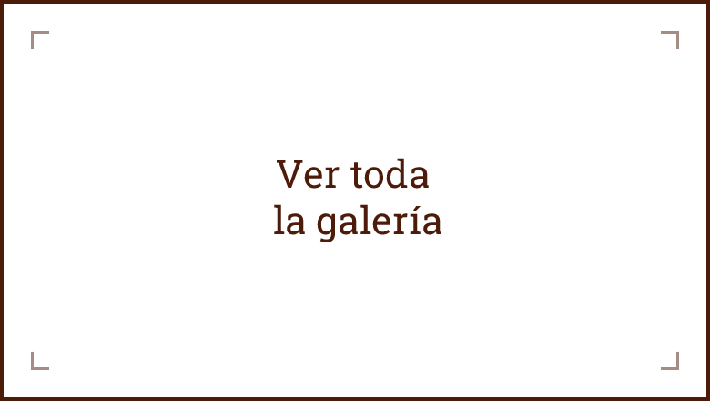 omar_galleria-1